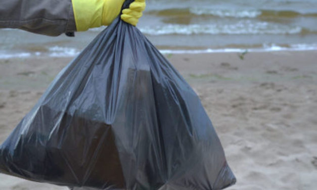 EYE ON THE ENVIRONMENT   Ventura County Coastal Cleanup Day on Sept. 18